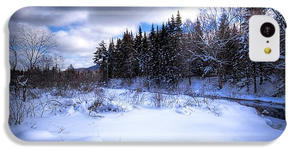 IPhone 5c Case featuring the photograph Winter Highlights by David Patterson