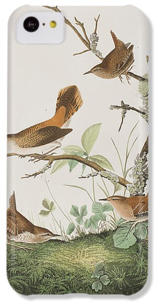 Winter Wren Or Rock Wren IPhone 5c Case by John James Audubon