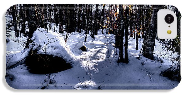 IPhone 5c Case featuring the photograph Winters Shadows by David Patterson