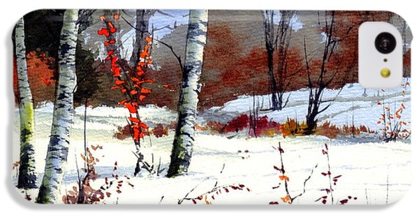 Robin iPhone 5c Case - Wintertime Painting by Suzann's Art