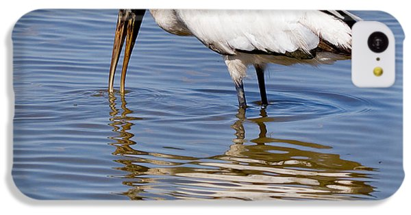 Wood Stork IPhone 5c Case by Louise Heusinkveld