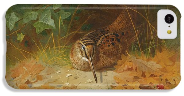 Woodcock IPhone 5c Case by Celestial Images