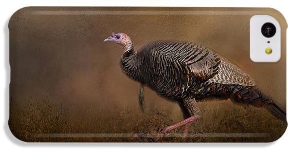 Woodland Walk - Wild Turkey Art IPhone 5c Case by Jai Johnson