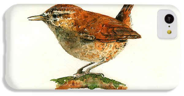 Wren Bird Art Painting IPhone 5c Case by Juan  Bosco