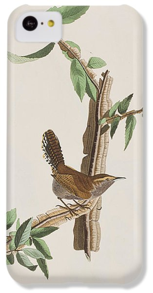 Wren IPhone 5c Case by John James Audubon