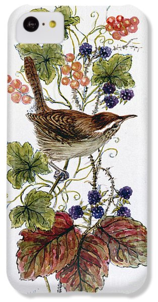 Wren On A Spray Of Berries IPhone 5c Case