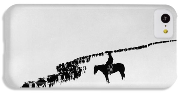 Horse iPhone 5c Case - Wyoming: Cattle, C1920 by Granger