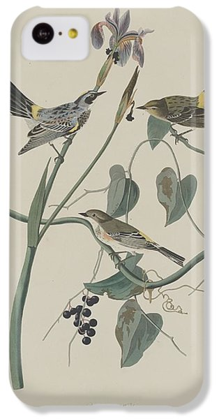 Yellow-crown Warbler IPhone 5c Case by Rob Dreyer