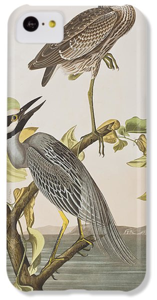 Yellow Crowned Heron IPhone 5c Case by John James Audubon