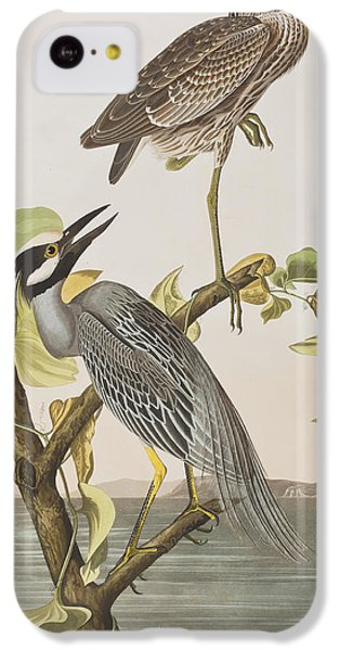 Yellow Crowned Heron IPhone 5c Case by John James Audubon