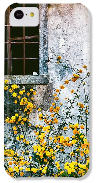 IPhone 5c Case featuring the photograph Yellow Flowers And Window by Silvia Ganora