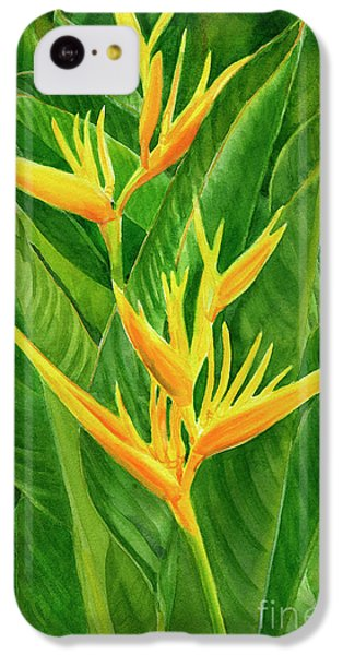Parakeet iPhone 5c Case - Yellow Orange Heliconia With Leaves by Sharon Freeman