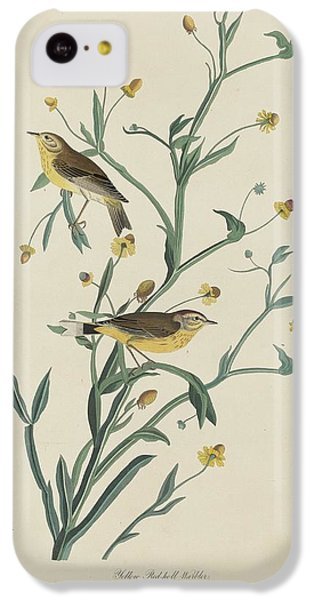 Yellow Red-poll Warbler IPhone 5c Case