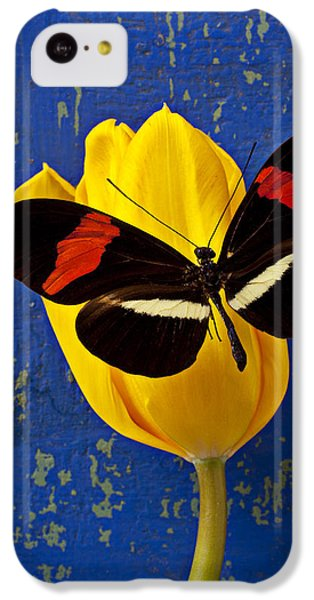 Tulip iPhone 5c Case - Yellow Tulip With Orange And Black Butterfly by Garry Gay