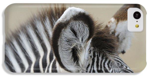 Zebra Ears IPhone 5c Case by David & Micha Sheldon