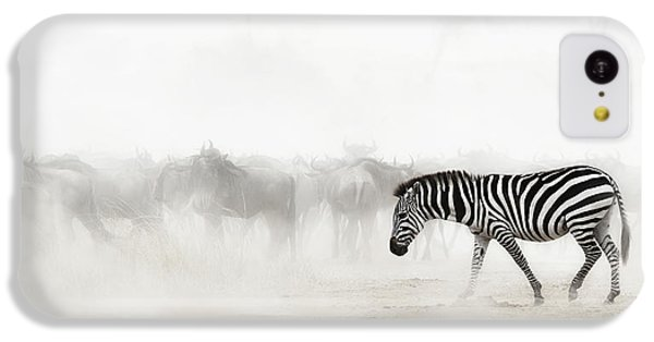 Zebra In Dust Of Africa IPhone 5c Case