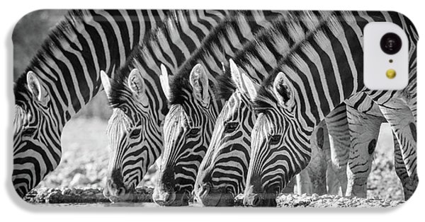 Zebras Drinking IPhone 5c Case