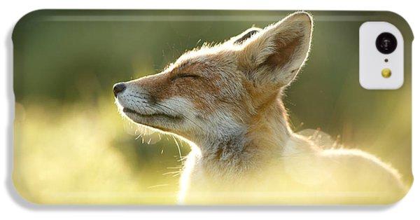 Zen Fox Series - Zen Fox Up Close IPhone 5c Case