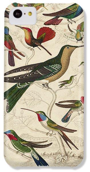 Humming Bird iPhone 5c Case - Trochilus, Hummingbirds by William Davis