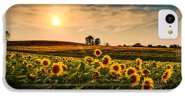 Beautiful Sunrise iPhone 5c Case - A View Of A Sunflower Field In Kansas by Tommybrison