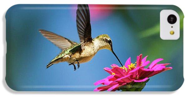 Humming Bird iPhone 5c Case - Art Of Hummingbird Flight by Christina Rollo