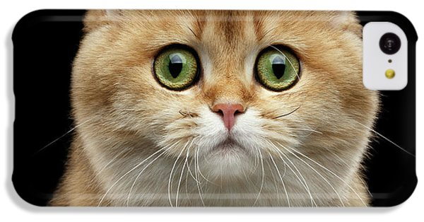 Cat iPhone 5c Case - Close-up Portrait Of Golden British Cat With Green Eyes by Sergey Taran