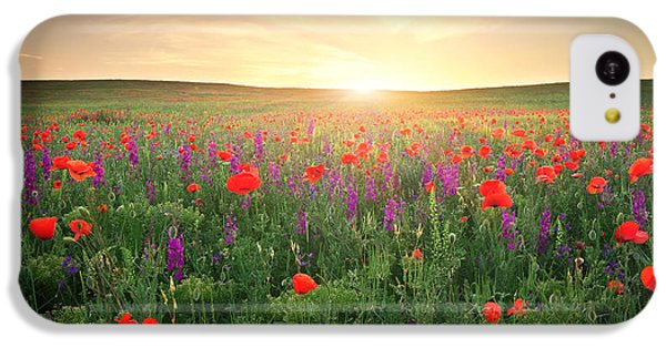 Beautiful Sunrise iPhone 5c Case - Field With Grass, Violet Flowers And by Esolex