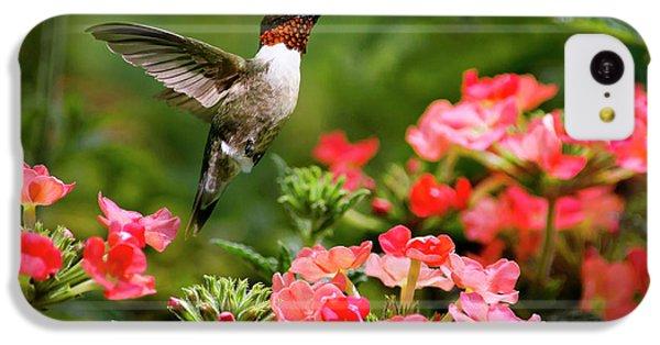Humming Bird iPhone 5c Case - Graceful Garden Jewel by Christina Rollo