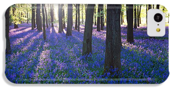 Beautiful Sunrise iPhone 5c Case - Purple Bluebell Woods In Early Morning by Stocker1970