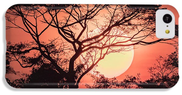 Belize iPhone 5c Case - Sunrise, Coastal Highway, Belize by William Sutton