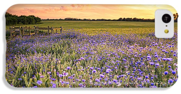 Beautiful Sunrise iPhone 5c Case - Sunset Over A Wild Flowers In Cornwall by Lukasz Pajor