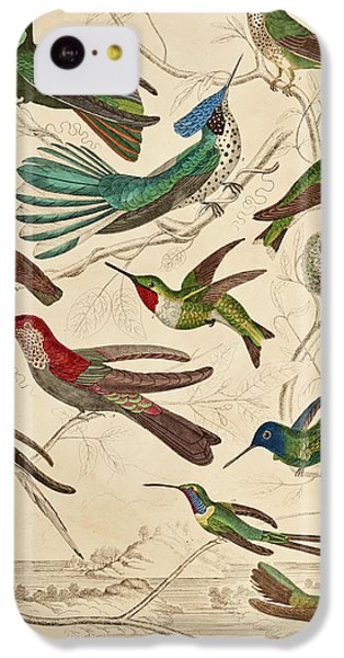 Humming Bird iPhone 5c Case - Trochilus - Hummingbirds by William Davis