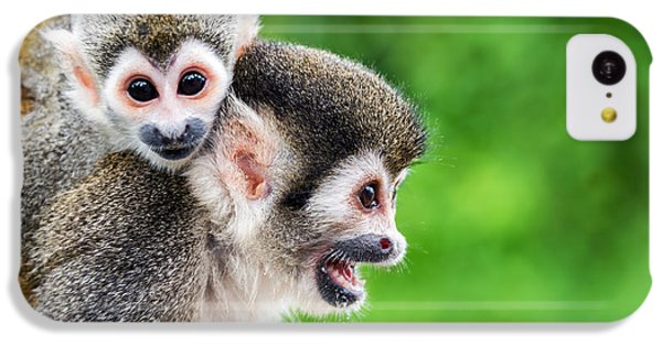 South America iPhone 5c Case - Two Squirrel Monkeys, A Mother And Her by Jess Kraft