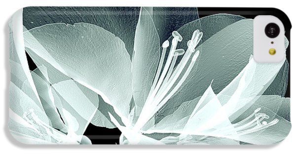 Floral iPhone 5c Case - Xray Image Of A Flower  Isolated On by Posteriori