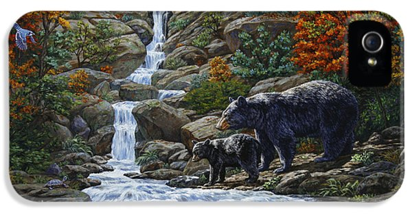 Woodpecker iPhone 5s Case - Black Bear Falls by Crista Forest