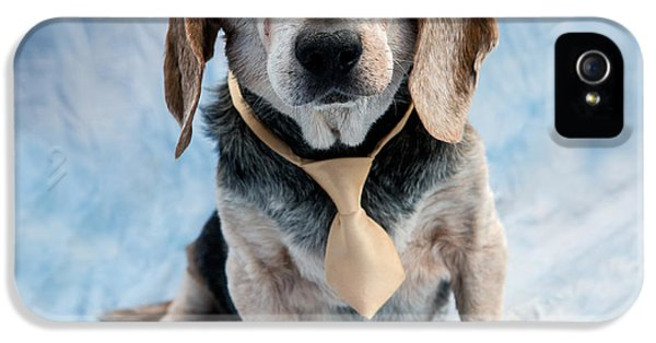 Kippy Beagle Senior And Best Dog Ever IPhone 5s Case by Iris Richardson