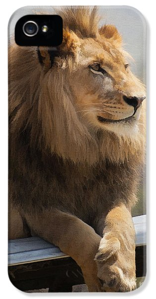 Majestic Lion IPhone 5s Case by Sharon Foster