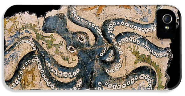 Bogdanoff iPhone 5s Case - Octopus by Steve Bogdanoff