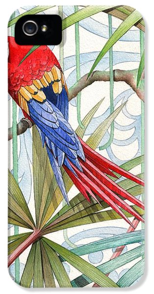 Macaw iPhone 5s Case - Parrot, 2008 by Jenny Barnard