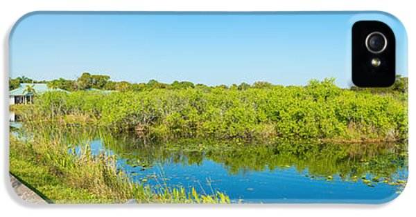 Anhinga iPhone 5s Case - Reflection Of Trees In A Lake, Anhinga by Panoramic Images