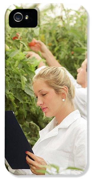 Scientists Examining Tomatoes IPhone 5s Case by Gombert, Sigrid