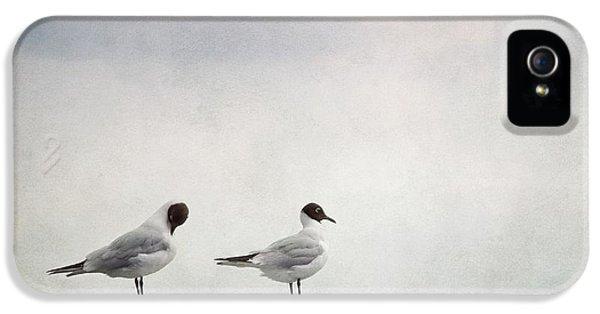 Seagulls IPhone 5s Case