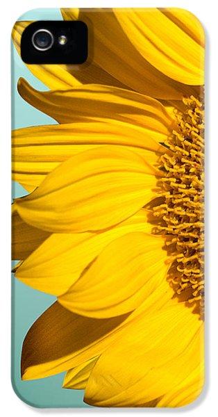 Sunflower IPhone 5s Case by Mark Ashkenazi