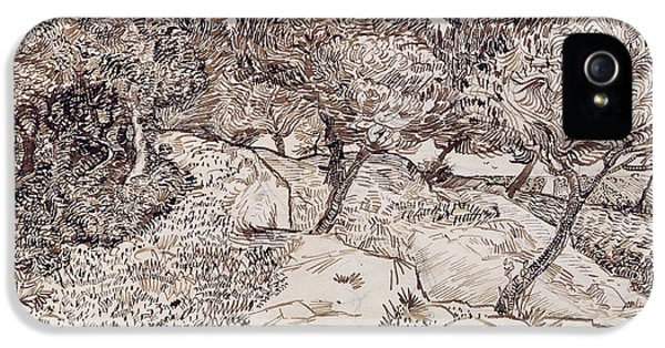 The Olive Trees IPhone 5s Case by Vincent Van Gogh