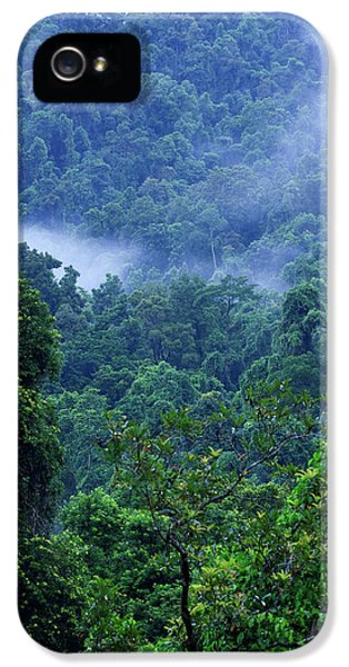 Far North Queensland iPhone 5s Case - Thick, Tropical Rainforest Covered by Paul Dymond