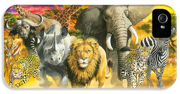 Cheetah iPhone 5s Case - Africa's Finest by John Francis
