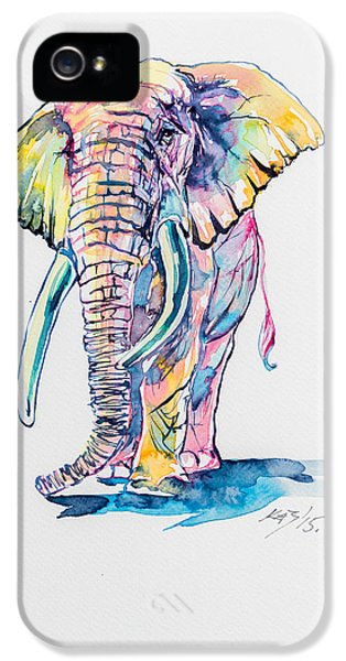 Elephant iPhone 5s Case - Colorful Elephant by Kovacs Anna Brigitta