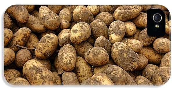 Potatoes IPhone 5s Case by Olivier Le Queinec