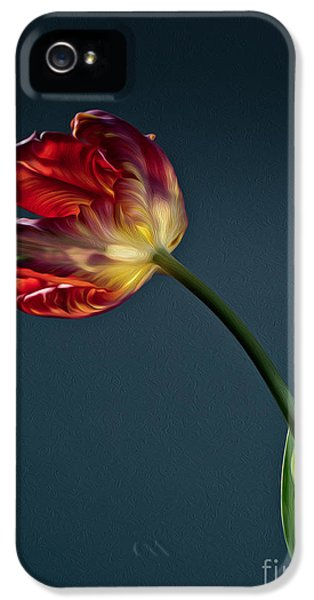 Tulip iPhone 5s Case - Red Tulip by Nailia Schwarz