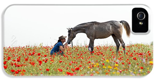 Three At The Poppies' Field... 4 IPhone 5s Case by Dubi Roman
